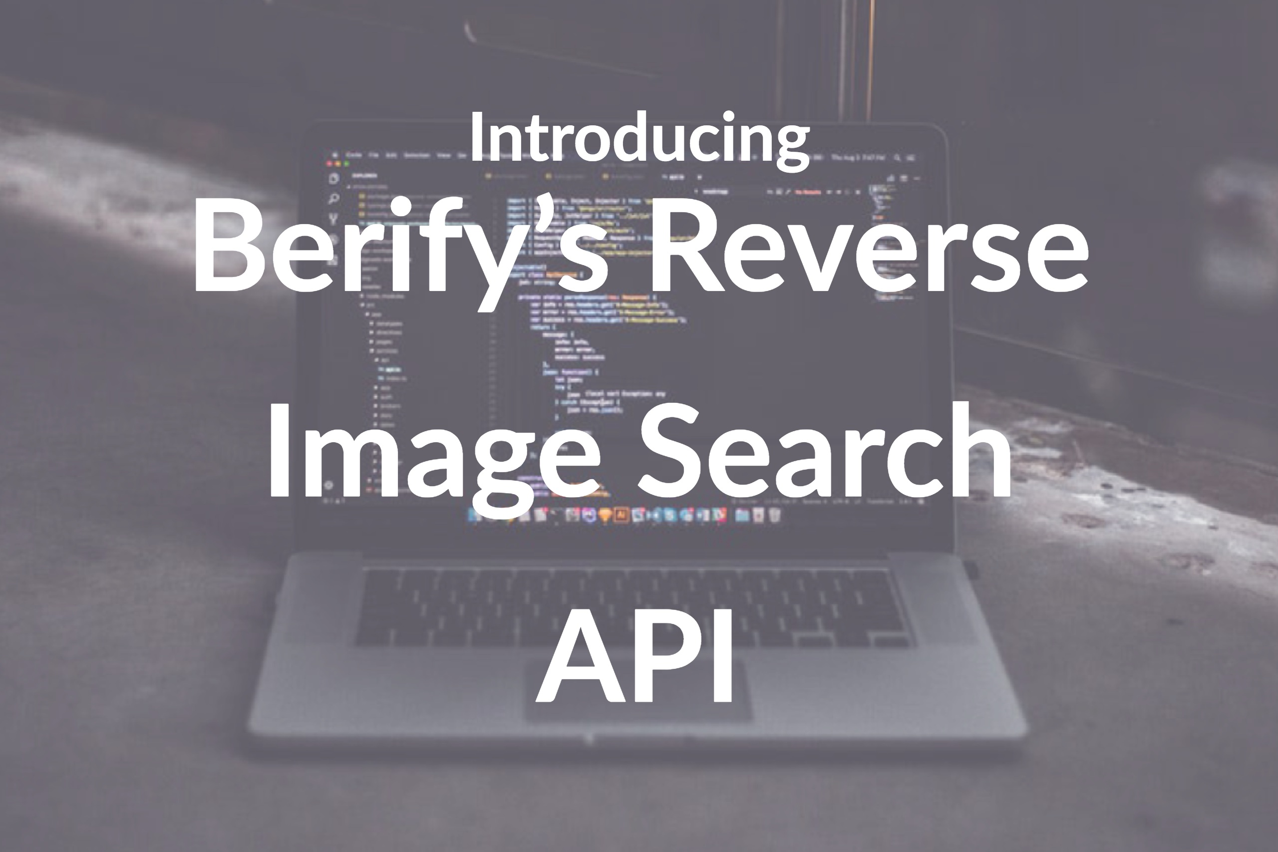 Introducing the Best Reverse Image Search API