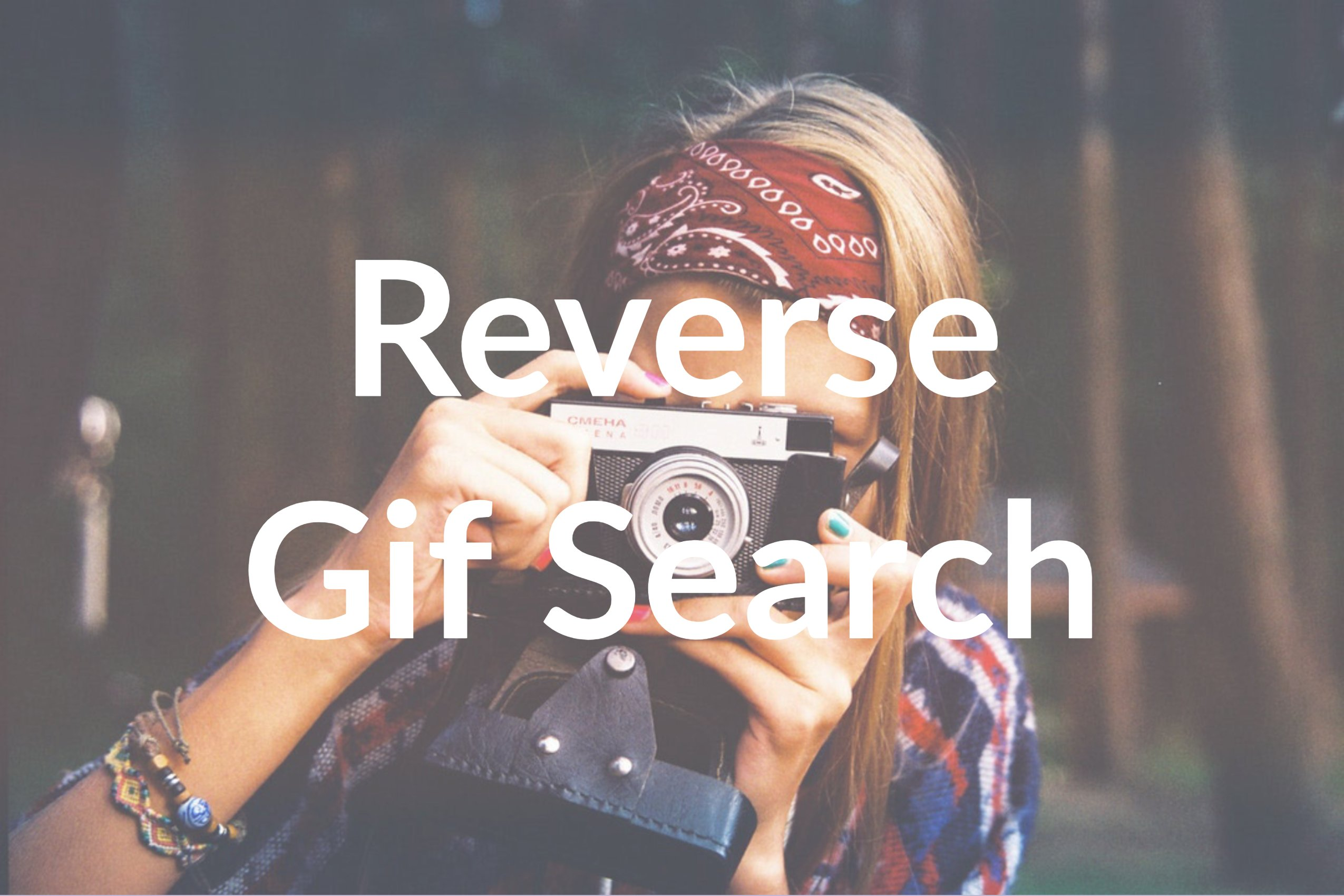 How to Do a Reverse Gif Search with Berify