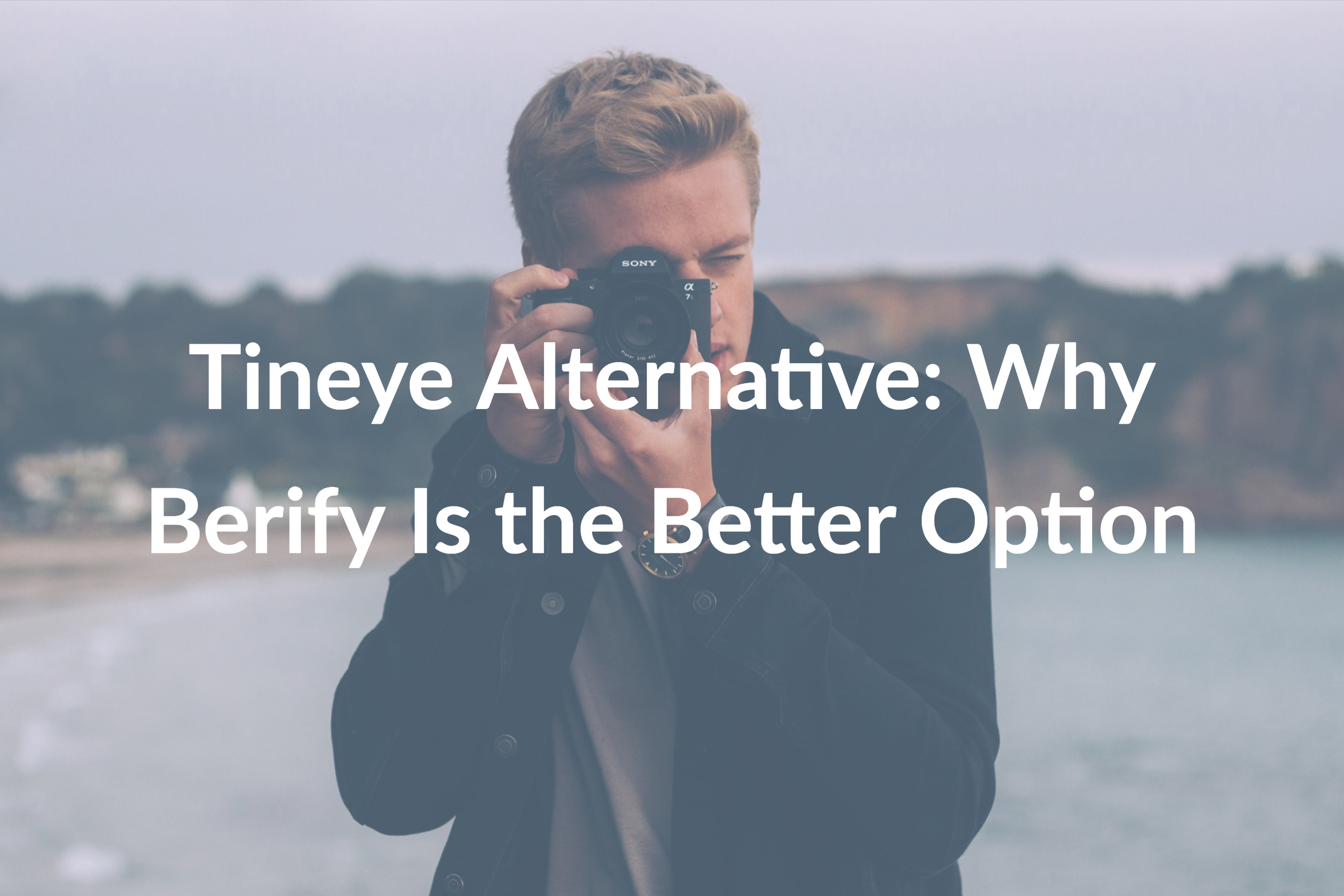 Tineye Alternative: Why Berify Is the Better Option