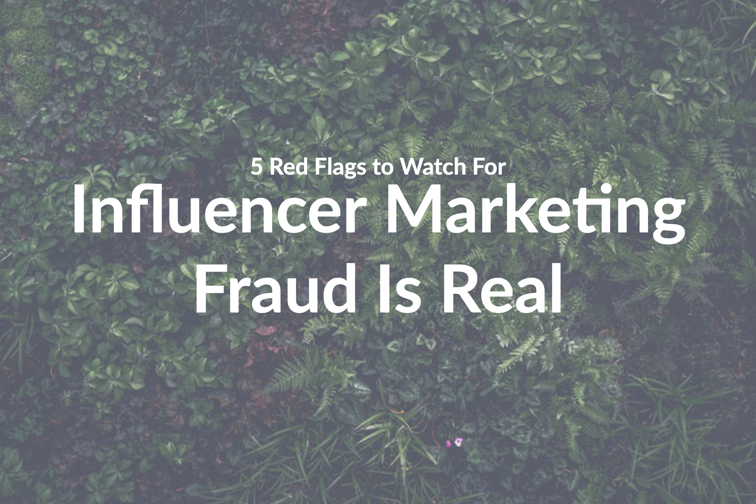 Influencer Marketing Fraud Is Real: 5 Red Flags to Watch For