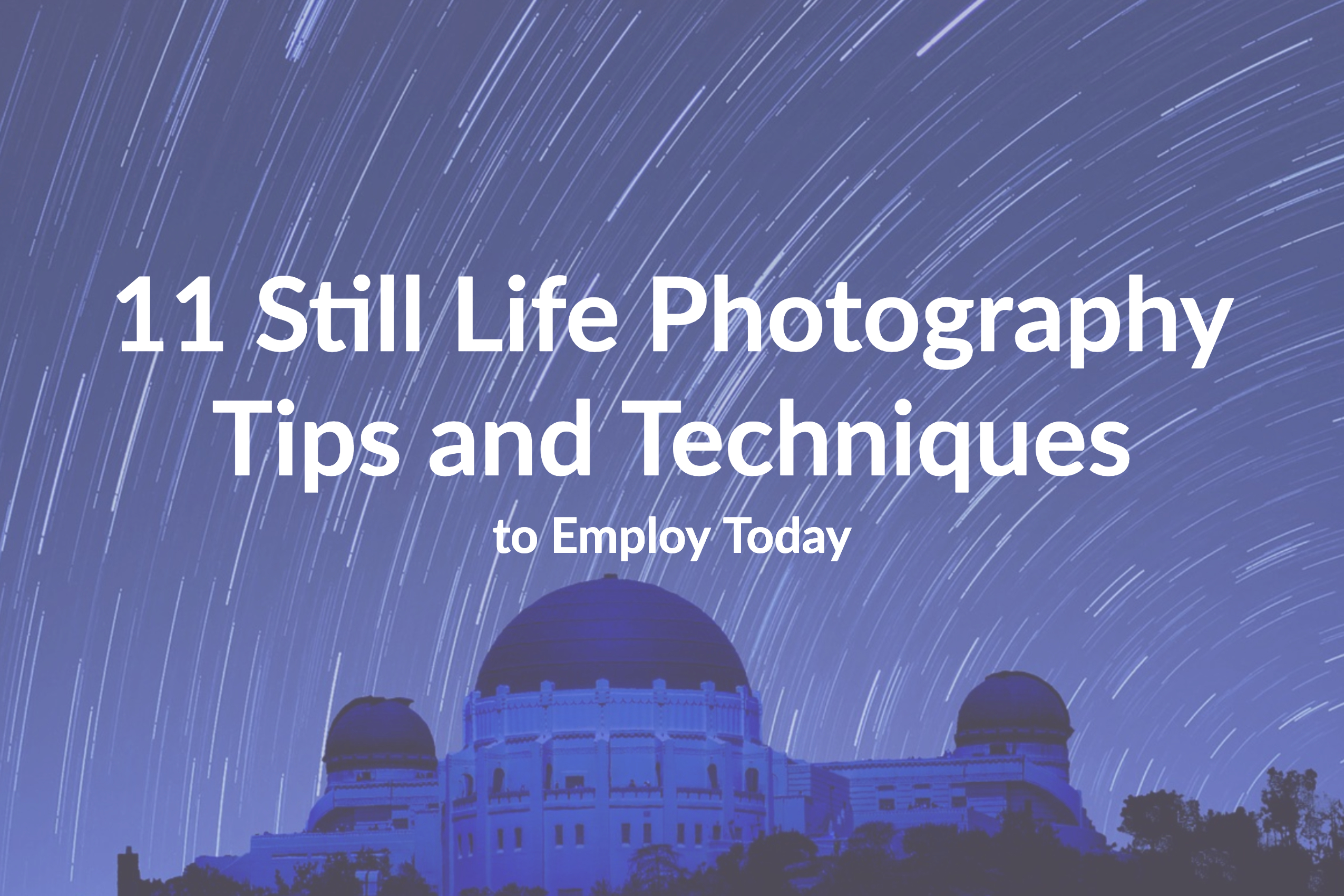 11 Still Life Photography Tips and Techniques to Employ Today